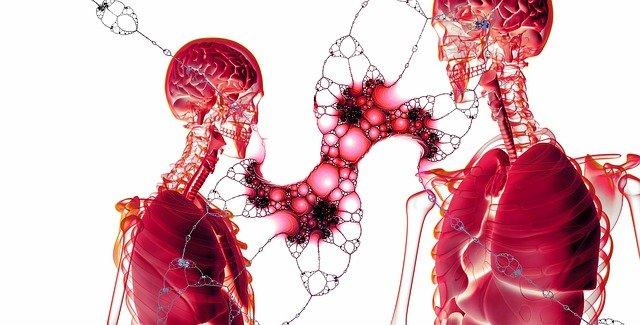 Le corps humain et les êtres vivants